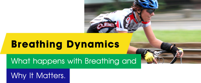 Breathing Dynamics: What happens with Breathing and Why It Matters.